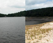 Mt Lake - Before and After